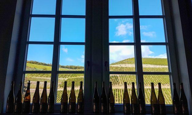 Création de site internet pour le vin